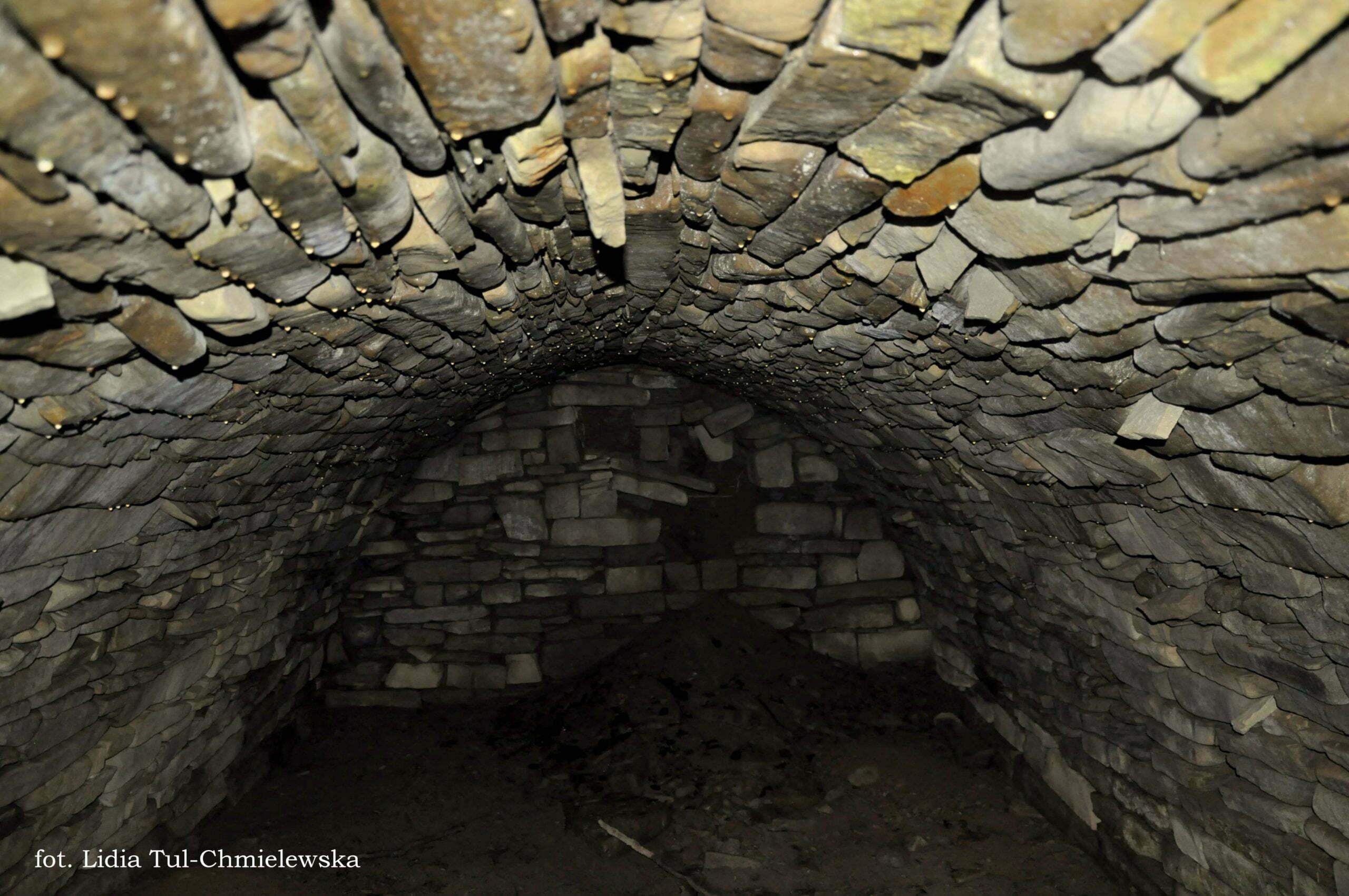 Jedna z wielu piwnic dośc dobrze zachowana Tworylczyk fot. Lidia Tul-Chmielewska
