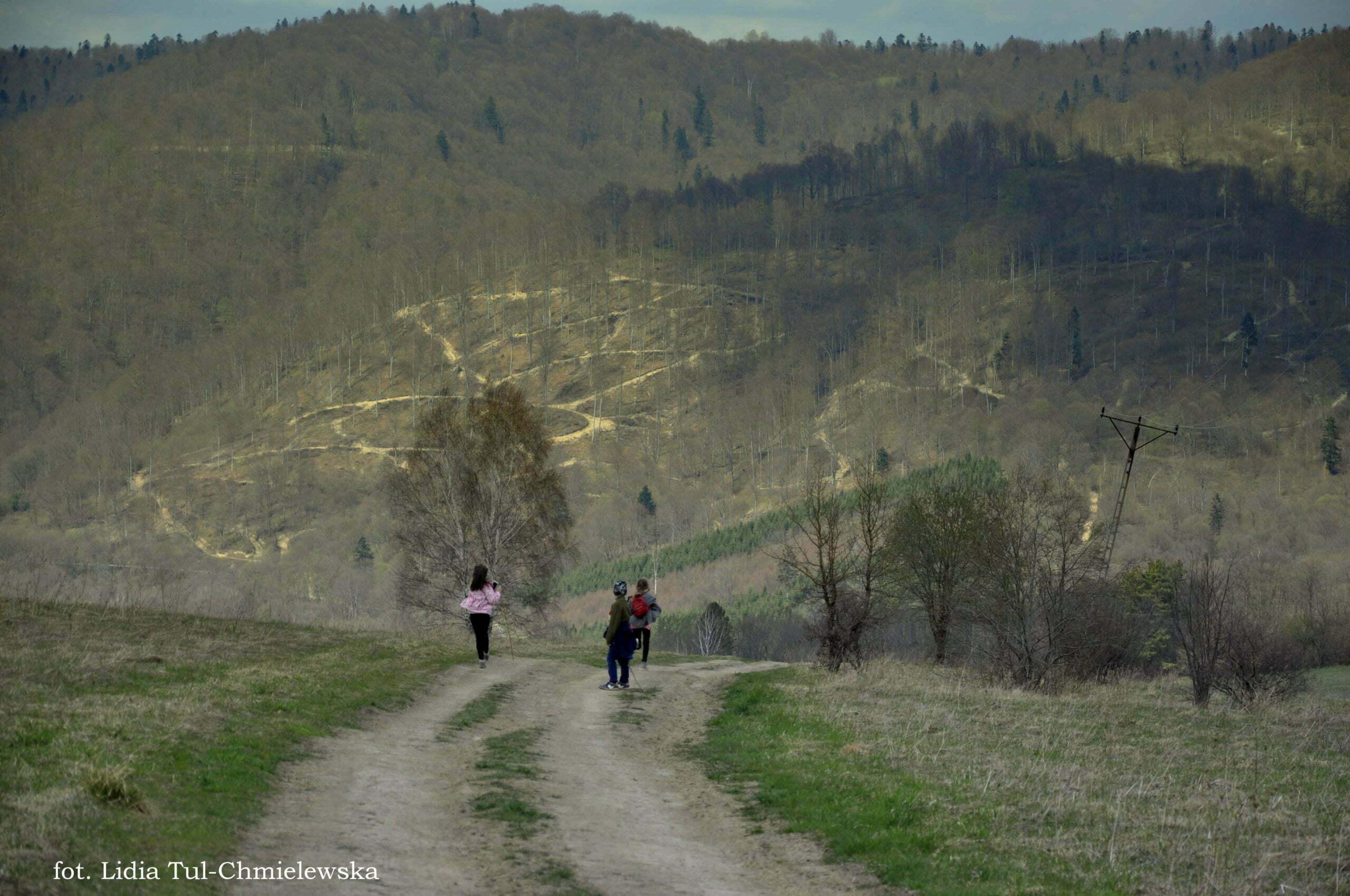 Kierunek Krywe fot. Lidia Tul-Chmielewska