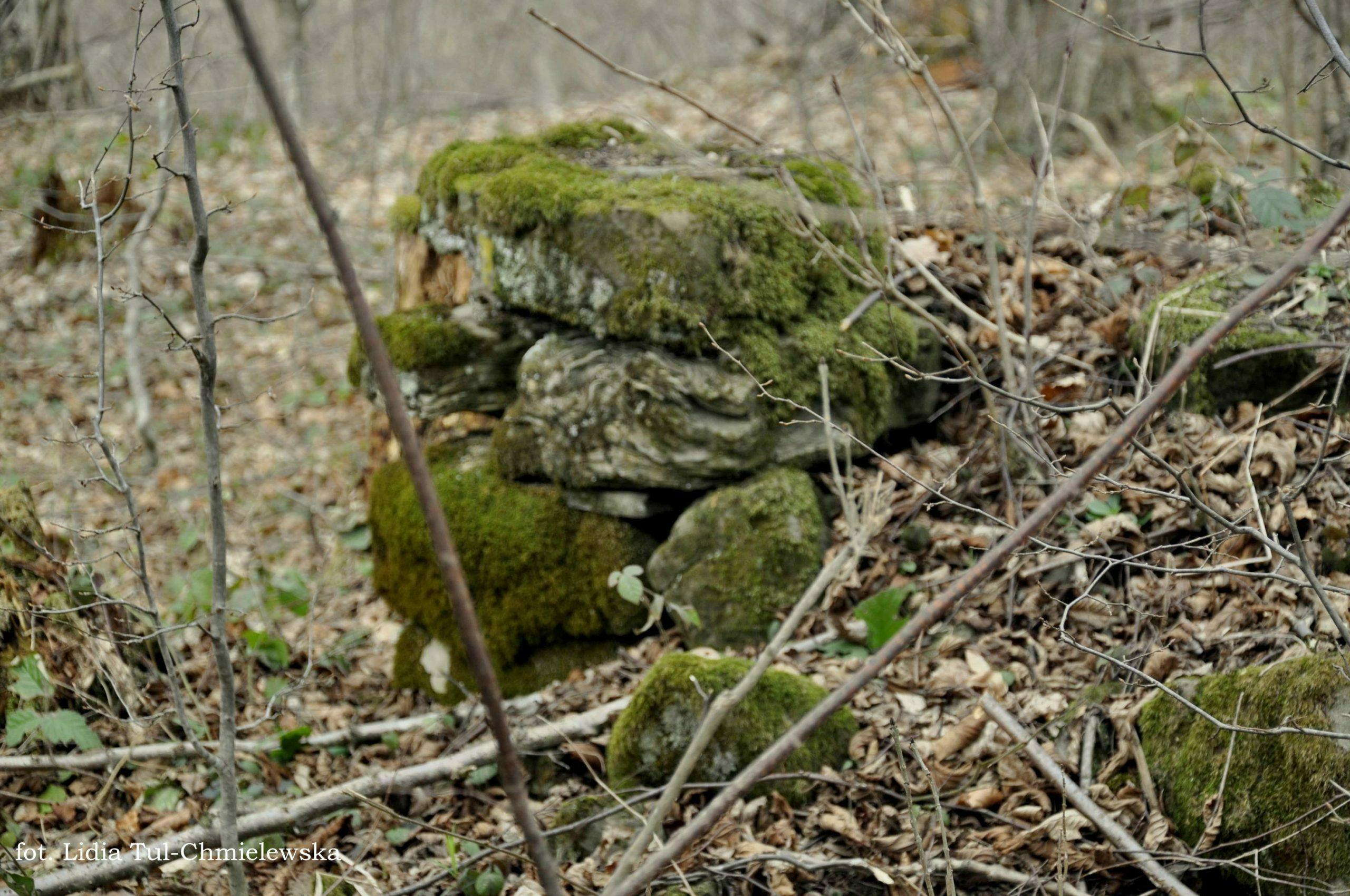 Pozostałości po wsiach fot. Lidia Tul-Chmielewska