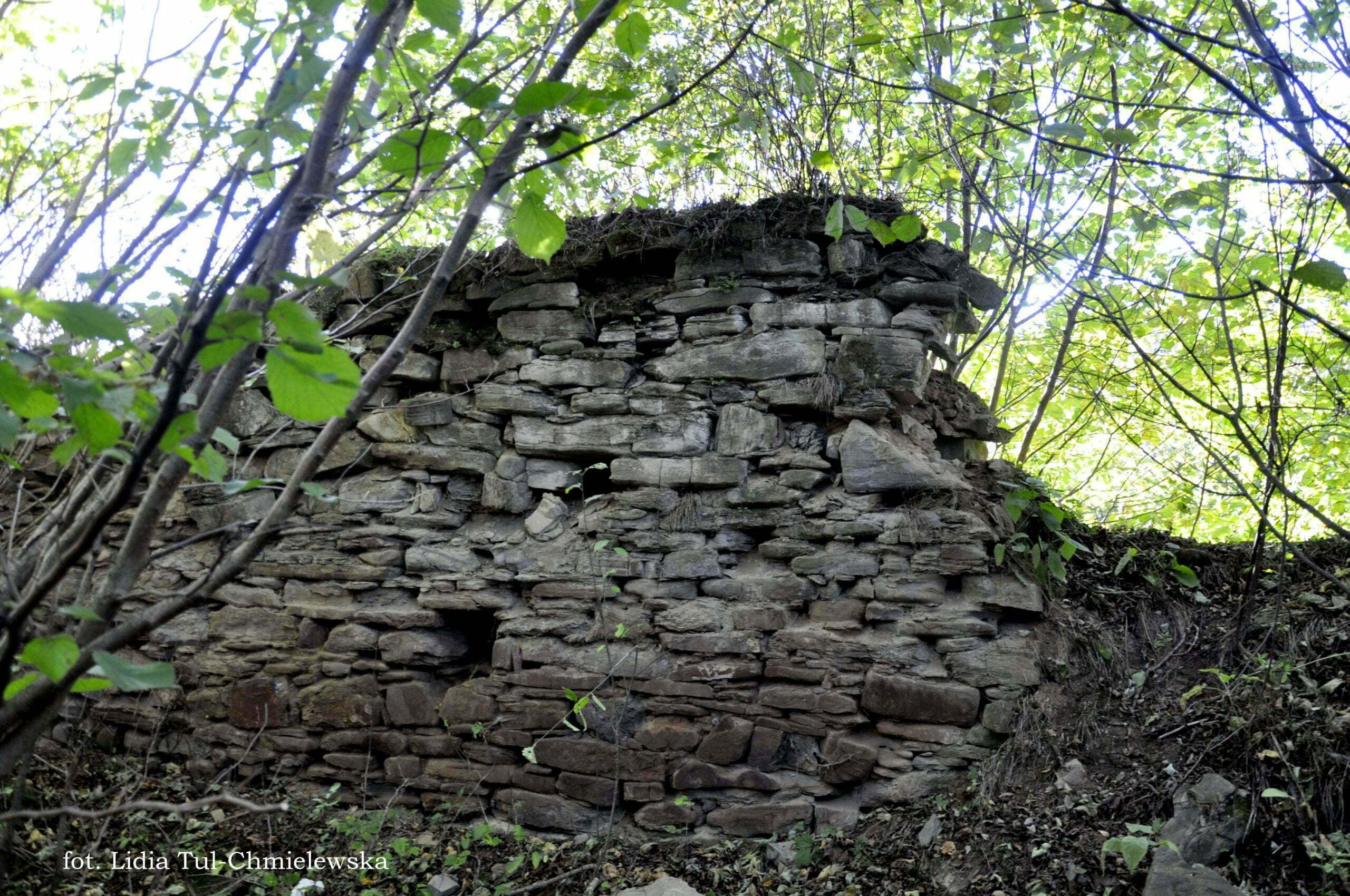 Ruiny dworu Krywe fot. Lidia Tul-Chmielewska