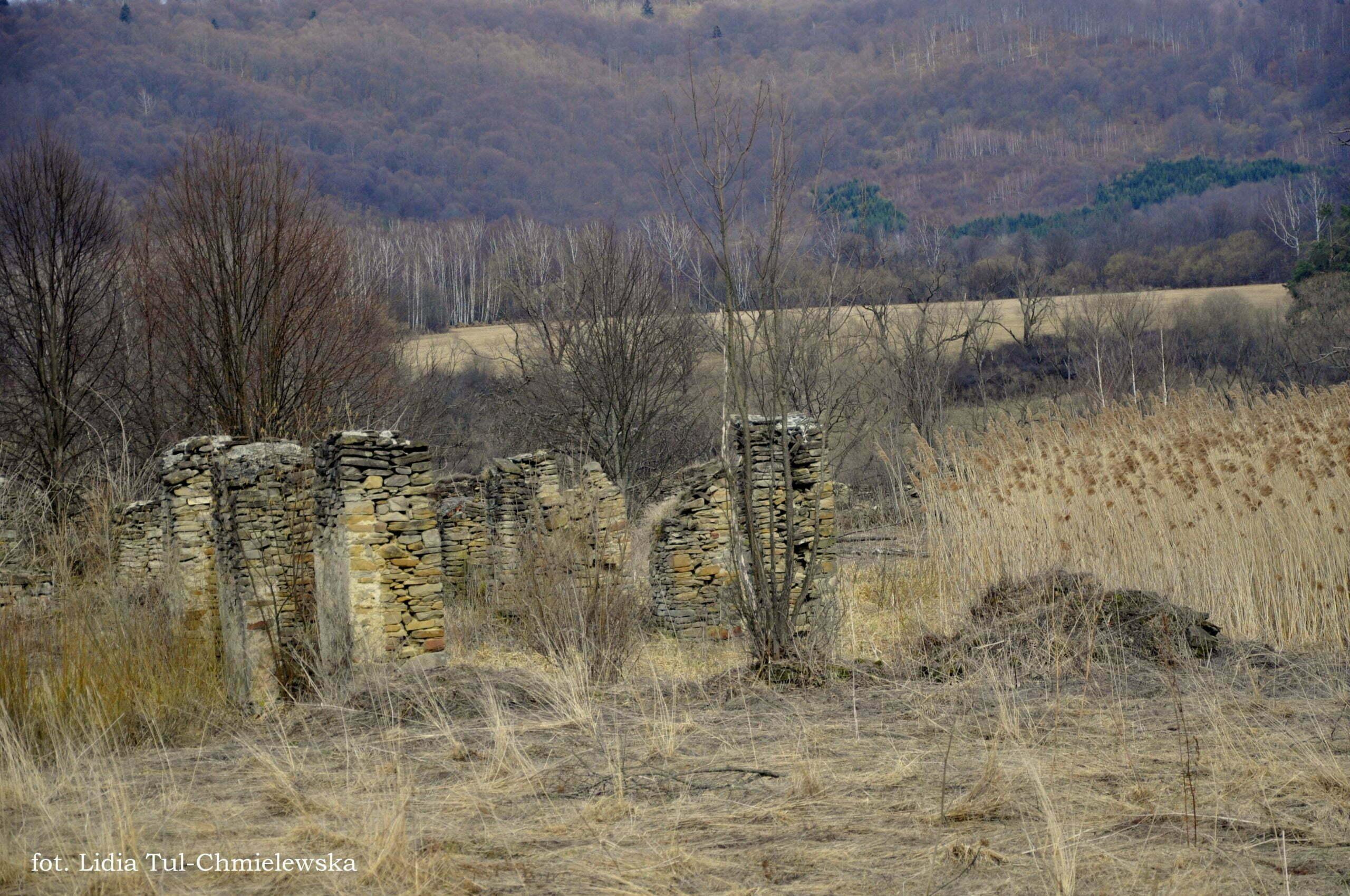 Ruiny stajni dworskich Tworylne fot. Lidia Tul-Chmielewska