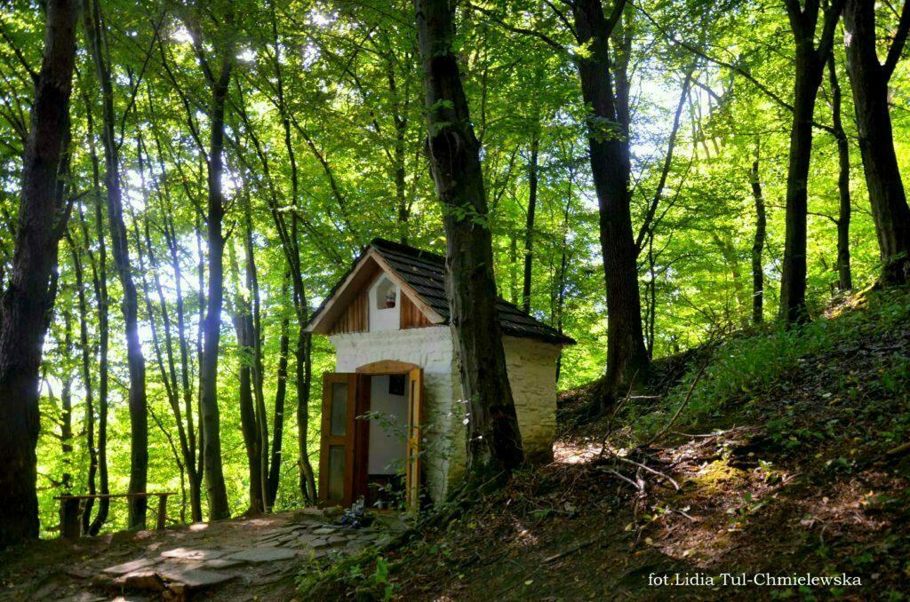 Kapliczka w Uluczu u stóp wzgórza Dubnyk fot. Lidia Tul-Chmielewska